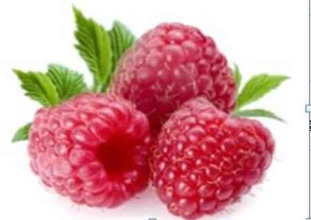进口美国红树莓浓缩汁批发